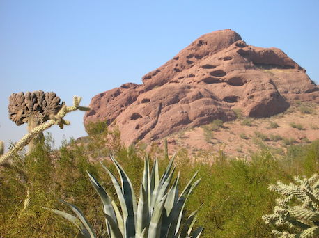Papago Buttes with desert plants